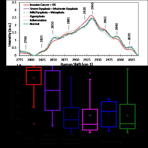 Raman Spectroscopy and Multimodality Endoscopy Imaging 3