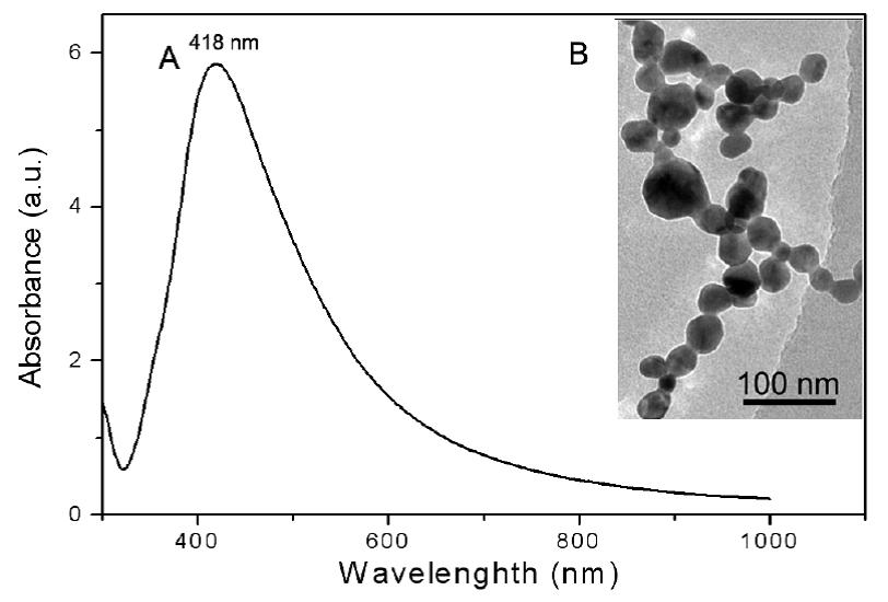 Raman Spectroscopy and Endomicroscopy Imaging 2