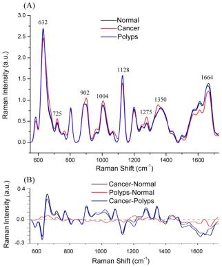 Raman Spectroscopy and Endomicroscopy Imaging 3